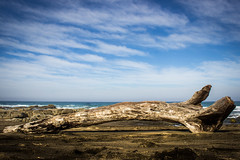 The Olde Log (Jonathan Horne) Tags: wood driftwood beach sea cloud ocean sand sky blue brown