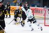 2015-02-03 AIK-Rögle SG0255 (fotograhn) Tags: ishockey hockey icehockey hockeyallsvenskan aik gnaget röglebk mål goal 23 jubel jublande glad glädje lycka happy happiness celebration celebrates depp deppig besviken besvikelse sorg ledsen sad unhappy disappointment disappointed dejected sport sportsphotography canon stockholm sweden swe