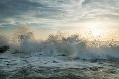 The Dance at Sunset (D~P~B) Tags: honeymoon honeymoonisland dunedin waves sunset crash dance peaceful beauty wet nikon d5300 beach weather wind breeze summerbreeze florida saltlife