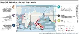 Marine World Heritage Sites – Biodiversity Worth Preserving
