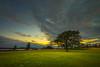 Sunset at Katariina Seaside Park (Jyrki Salmi) Tags: jyrki salmi katariinanniemi kotka finland evening sunset green grass tree