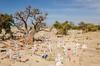 SENEGAL -  306 (Giulio Mazzini) Tags: adventure africa avventure black desert face free holiday landscape libertà portrait river senegal sun teranga world