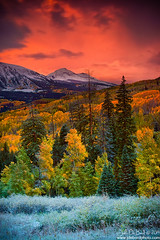 Autumn Dawn (rosacruzjl) Tags: aspen colorado crestedbutte eastbeckwith fall keblerpass rockies rockymountains westelkmountain autumn blanket city color colorful forest gold green light mountain orange peak pink place red sky sunlight sunrise texture town tree yellow