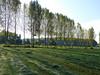 Autumn is in the air (joeke pieters) Tags: 1360026 panasonicdmcfz150 woold winterswijk achterhoek gelderland nederland netherlands holland landschap landscape landschaft paysage landelijk rural platinumheartaward