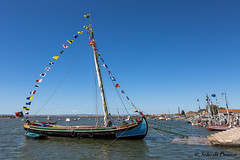 Tagus river traditional old sailing boat (JOAO DE BARROS) Tags: portugal tagus tejo sailing boat nautical maritime joão barros
