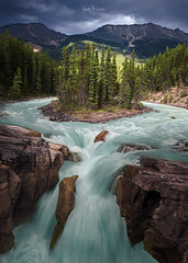 Canada 2017 #4 (Ramón Menéndez Covelo) Tags: canada icefield parkway sunwapta falls landscape vertical outdoors day nobody water trees rocks merging