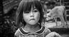 Les Yeux du Vietnam #7 (Kevin Mouzet) Tags: black white noir et blanc people viet vietnam asia asie women old smoke face visage head vietnamien girl kevin mouzet canon 50d tamron travel reportage journalism eyes eye les yeux du world bw monochrome portrait personnes
