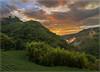 Rueili Sunset (jos.pannekoek) Tags: alishan rueili sunset d7000 bamboo taiwan landschap landscape