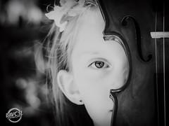 Violon Passion (davcsl) Tags: blackwhite bw biancoenero blackdiamond childshappiness child davcsl fillette nimes jesoutiensnîmes jardinsdelafontaine languedocroussillon monochrome monotones model noiretblanc noiretblancblackwhite nb nîmes occitanie people portrait southoffrance violon women violin music musique violoniste