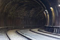 around the bend (Greg Rohan) Tags: transport sydney lightrail traintracks tunnel railroad railway railwaytracks photography d7200 2017 rail tracks