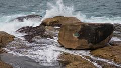 Mermaid Rock (hotdipper) Tags: bondibeach nsw places sydney ocean rock rockpool splash spray storm northbondi newsouthwales australia au