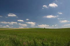 Der einsame Baum (Xtraphoto) Tags: horizont horizon field feld sky baum tree lonely einsam einer one wolken clouds landscape landschaft minimal grün green