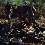 Vietnam War 1967 - Dead Viet Cong Soldiers Lying on the Ground thumbnail