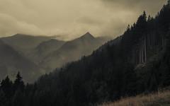 Melancholy (Netsrak) Tags: alpen alps baum berg berge bäume europa europe kleinwalsertal landschaft natur nebel stimmung wald fog landscape mist mood mountain mountains nature tree woods österreich austria at