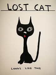 David Shrigley - Untiteld (Lost Cat)