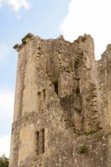 DSC_1722 (amoamas07) Tags: oldwardourcastle englishheritage castle ruin