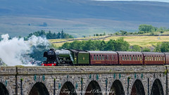 Flying Scotsman 60103 Crosses Ribblehead Viaduct (explore) (phat5toe) Tags: ribbleheadviaduct flyingscotsman 60103 locomotive steam train track railway nikon d7000 tamron150600mm