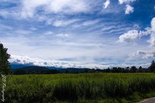 View from Cieplice Zdrój - Giant Mountains (Karkonosze)