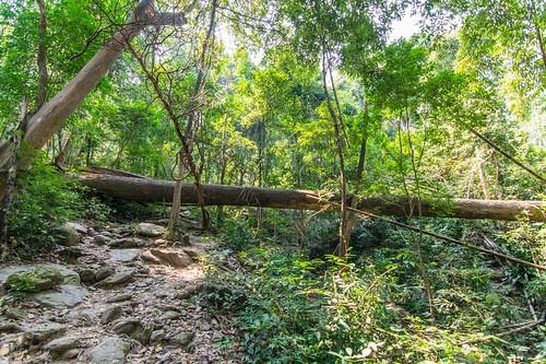 ramkhamhaeng national park - thailande 4