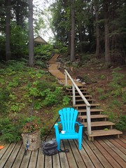 Long Staircase to the Dock (Piscesgirl2~) Tags: muskoka ontario cottage staircase