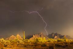 Bathed in Light (Mike Olbinski Photography) Tags: 20170905 arizona cactus canon50mm12l canon5dsr cholla cliffs lightning monsoon mountains organpipe rain rainbow saguaro southernarizona stormchasing sunset
