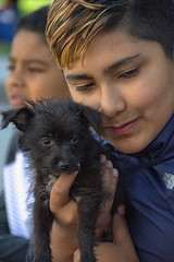Bonded (swong95765) Tags: boy kid animal dog canine pet cute endearing puppy