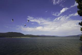 Lake Davis fly-by