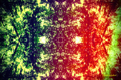 Seasons Trees (Stephenie DeKouadio) Tags: canon artistic art artwork abstractart abstract abstractpainting painting texture colorful tree trees hypnotique