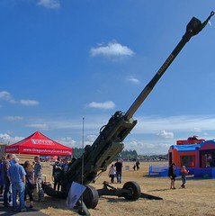 Big Guns (swong95765) Tags: cannon gun weapon military guard barrel huge mighty