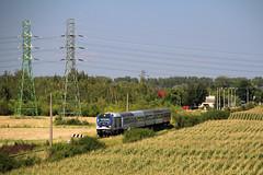 SU160-003 (Krzysztof D.) Tags: cpl pilchów charzewice gama pesa diesel spalinowy spalinowa pociąg train zug kolej bahn railway tlk pkp intercity