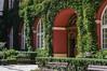 Ossolineum Archway (parsonsandrew1) Tags: nikon d3200 50mm ossolineum wrocław poland museum janusz witwicki art history ivy brick red green windows