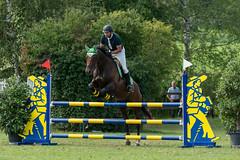 A9903719_s (AndiP66) Tags: springen derby aesch bl baselland 2017 juni june 13august2017 pferd horse schweiz switzerland kantonbaselland cantonofbaselland concours wettbewerb horsejumping springreiten pferdespringen equestrian sports pferdesport sport sony alpha sonyalpha 99markii 99ii 99m2 a99ii ilca99m2 slta99ii sony70400mm f456 sony70400mmf456gssmii sal70400g2 amount andreaspeters
