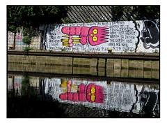 STREET ART by DSCREET (StockCarPete) Tags: dscreet streetart reflection doryprevin owl londonstreetart urbanart graffiti london uk wallart lyrics goinghome