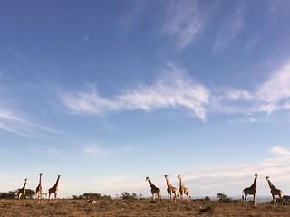 South Africa Hunting Safari - Eastern Cape 45