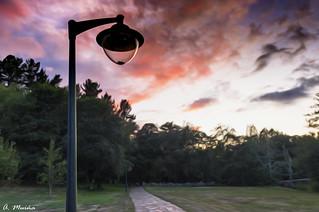 Streetlamps under the sunset. Farolas bajo la puesta de sol