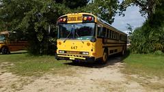 Bay District Schools #647 (abear320) Tags: school bus bay district schools ic blue bird thomas panama city florida