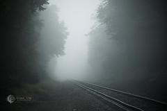 Magical Mist-ery Tour (Scenic Vibe Photography) Tags: mist fog misty foggy traintracks journey travel
