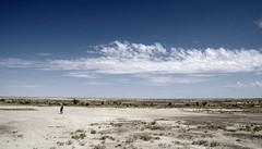 Ah-Shi-Sle-Pah badlands; San Juan Co., New Mexico, USA. (cbrozek21) Tags: ahshislepahbadlands new mexico sky emptiness space landscape desert geology