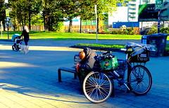 Two life styles: New beginnings vs No Exit (peggyhr) Tags: peggyhr bench man woman candid streetphotography dog pram baby shadows sunshine bike worldlypossessions dsc08472ax vancouver bc canada hbm
