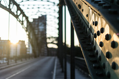 [Sunset on Eiswerdebrücke] (MaSiCiu) Tags: ifttt 500px sunset cityscape bridge berlin skyline suspension overpass infrastructure expressway cablestayed williamsburg skyway one world trade center elevated road