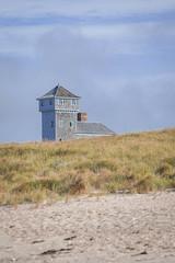 on the cape (jimmy_racoon) Tags: 70200 f4l is canon 5d mk2 cape cod national seashore massachusetts grasslands landscape nature 70200f4lis canon5dmk2 capecodnationalseashore capecod