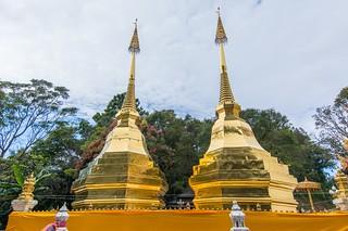 doi tung - thailande 15