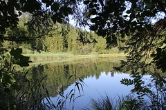 Lake - Taferlklaussee (katharinaburgstaller1) Tags: austria lake upperaustria nature water trees plants green gras landscape sky sun sunray hidding naturelover hobby photography canon