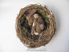 Needlefelt sleeping Hare (GaiaGolden) Tags: sleeping hare rabbit bunny flowers embroidery daisies pink nest handmade soft sculpture wilderness felt needlefelt needle wild