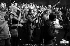 2017 Bosuil-Het publiek bij Back To Back en The Lachy Doley Group 5-ZW