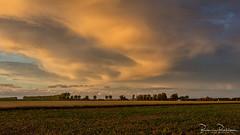 Wonderful sky light and colors (BraCom (Bram)) Tags: bracom sky landscape landschap cloud wolk farm boerderij evening sunset avond zonsondergang field akker trees bomen herkingen goereeoverflakkee zuidholland nederland southholland netherlands holland widescreen 169 bramvanbroekhoven nl