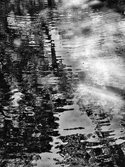 Lake #4 (Enio Godoy - www.picturecumlux.com.br) Tags: mobileart celular reflex mobilephotography abstract abstraction samsung zuleikajabourcellularphone102017junho10minasgerais niksoftware abstractart water cellularphone reflections photomobile mobilephone saltosp samsungs8 phone galaxys8 mobile samsunggalaxys8 estersgarden silverefex2rochasmolhadas corrugations samsunggalaxy mobgrafia impressionism