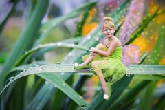 TinkerBell (em-si) Tags: tinkerbell portrait photoshop fee fairy nikond800 nikon2470 fantasy