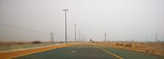 Sandstorm (Irina.yaNeya) Tags: uae emirates sand sandstorm road lamps sky desert eau arena tormentadearena cielo carretera lámparas desierto الامارات رمل عاصفةرملية طريق سماء صحراء مصابيح оаэ эмираты песок песчанаябуря дорога фонари небо пустыня