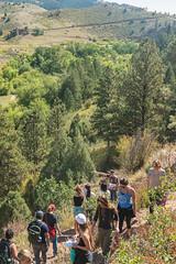 _JRK1154.jpg (CAP VRC - University of Colorado-Denver) Tags: planing murp plantsecology lairothebearpark plants parks mouintains fall september austintroy